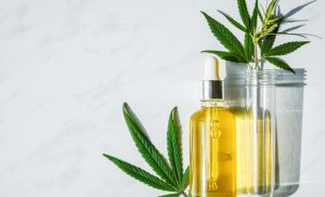 Best Outlet to Visit for Quality CBD Oil