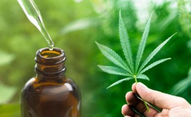 Cannabis: You Are Sleeping On These CBD Benefits – READ HERE!