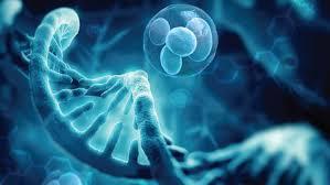 Myths About Regenerative Medicine