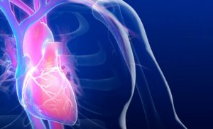 Signs you Need Cardiovascular Treatment