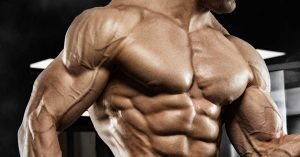 Stay Healthy and Fit Improve Your Shape And Muscle Mass