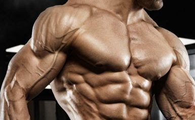Stay Healthy and Fit: Improve Your Shape And Muscle Mass
