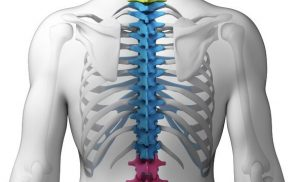 The Best Treatment Option for Spine Fractures