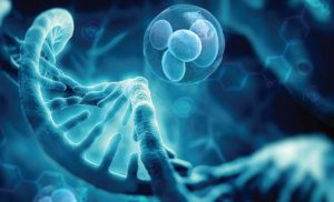 Why You Need to Consider Regenerative Medicine