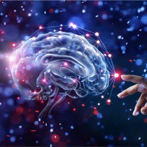 brain supplement Online