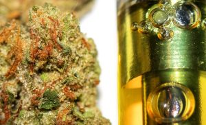 Know about the Delta 8 THC production